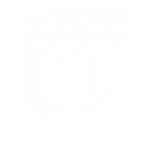 university of maine flag logo