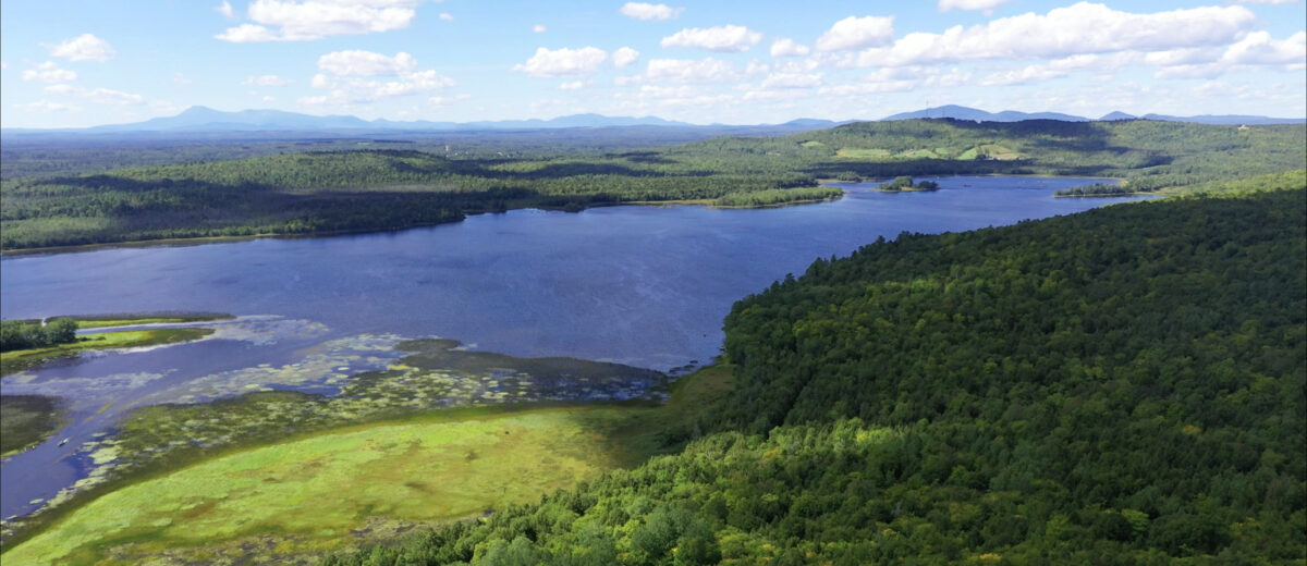 aerial view of maine woods