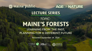 Thumbnail from video title screen on Maine's Forests