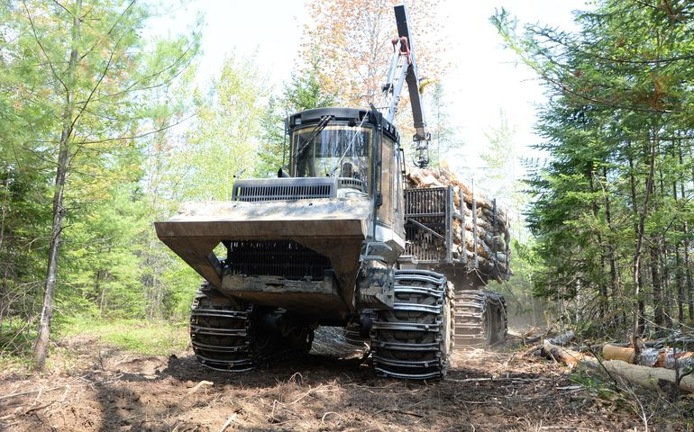 Maine Forestry